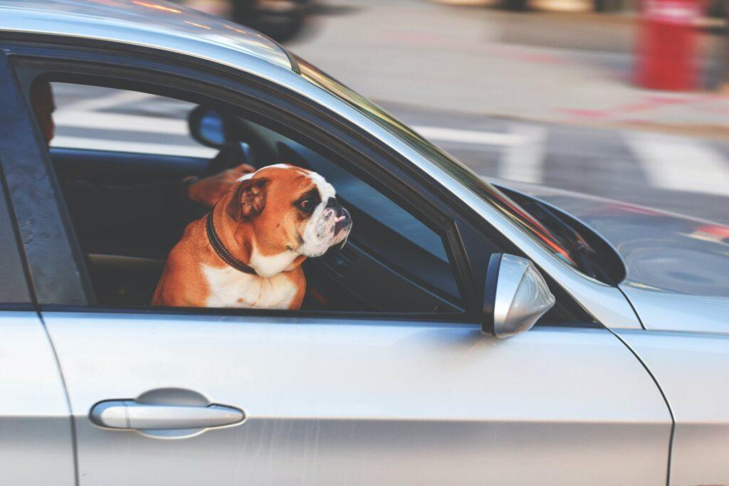 Είναι υποχρεωτική η ασφάλεια αυτοκινήτου